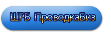 "Школа Развития Бизнеса ""ПроводкаБиз"""