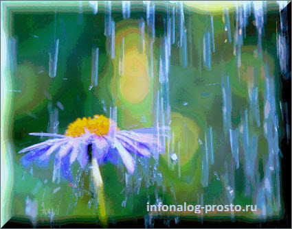 дождь скидок